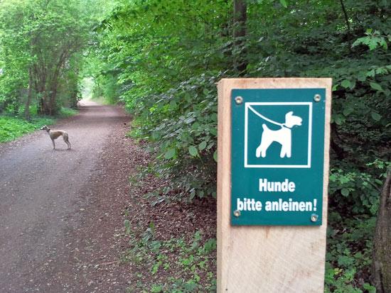 Hunde bitte anleinen- oder auch nicht
